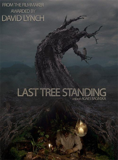 Longstocking Studio Sydney Mad Last Tree Standing foley artist and sound designer